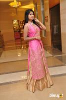 Aanya at UE The Jewellery Expo Press Meet (12)