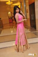 Aanya at UE The Jewellery Expo Press Meet (13)
