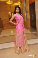 Aanya at UE The Jewellery Expo Press Meet (17)