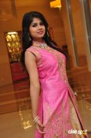 Aanya at UE The Jewellery Expo Press Meet (25)
