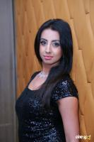 Actress Sanjana photoshoot (9)