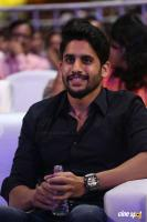 Naga Chaitanya at Premam Audio Launch (17)