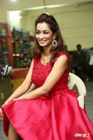 Rashmi Thakur New Photos (15)