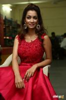 Rashmi Thakur New Photos (17)