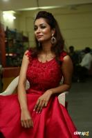 Rashmi Thakur New Photos (19)