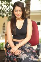 Raashi Khanna New Photos (59)