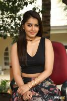 Raashi Khanna New Photos (60)