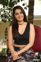 Raashi Khanna New Photos (61)