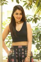 Raashi Khanna New Photos (73)