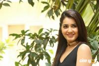 Raashi Khanna New Photos (78)