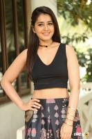 Raashi Khanna New Photos (8)