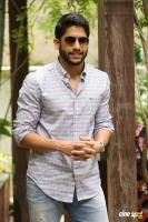 Naga Chaitanya Premam Interview Stills (13)
