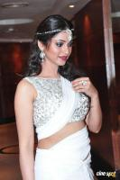 Shilpi Sharma New Images (13)