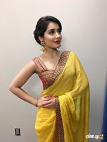 Raashi Khanna Pictures (10)