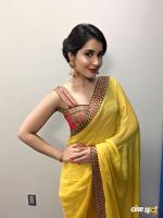 Raashi Khanna Pictures (12)