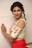 Kruthika Jayakumar at Intlo Deyyam Nakem Bhayam Trailer Launch (23)
