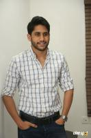 Naga Chaitanya Latest Images (16)