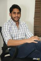 Naga Chaitanya Latest Images (18)