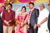 Vasu Vikram's Daughter Wedding Reception (12)