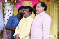 Vasu Vikram's Daughter Wedding Reception (15)