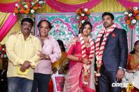 Vasu Vikram's Daughter Wedding Reception (16)