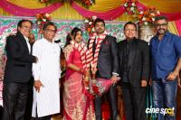 Vasu Vikram's Daughter Wedding Reception (23)