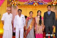 TR Selvam Daughter Kiruthika Wedding Reception Photos