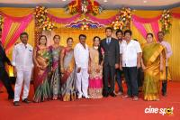 TR Selvam Daughter Kiruthika Wedding Reception (18)