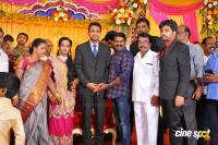 TR Selvam Daughter Kiruthika Wedding Reception (23)
