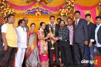 TR Selvam Daughter Kiruthika Wedding Reception (6)