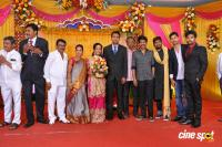 TR Selvam Daughter Kiruthika Wedding Reception (8)