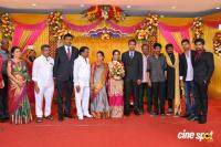 TR Selvam Daughter Kiruthika Wedding Reception (9)
