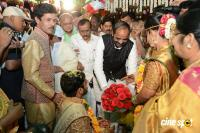 Bandaru Dattatreya Daughter Marriage (42)