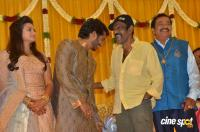 Pandu Son Pintu Marriage Reception (26)