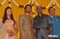 Pandu Son Pintu Marriage Reception (29)