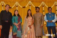 Pandu Son Pintu Marriage Reception (30)