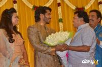 Pandu Son Pintu Marriage Reception (34)