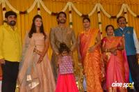 Pandu Son Pintu Marriage Reception (37)