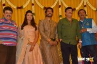 Pandu Son Pintu Marriage Reception (38)
