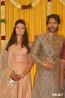 Pandu Son Pintu Marriage Reception (44)