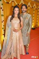 Pandu Son Pintu Marriage Reception (5)