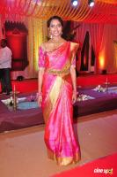 Vijay Karan & Aashana Wedding Event (12)