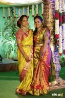 Writer Thota Prasad Daughter Wedding Reception (20)