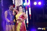Writer Thota Prasad Daughter Wedding Reception (34)
