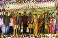 Writer Thota Prasad Daughter Wedding Reception (7)