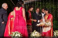 Sreenath Basi wedding reception photos (32)