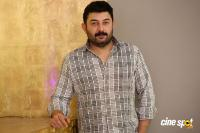 Arvind Swamy Interview Photos (15)