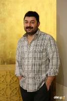 Arvind Swamy Interview Photos (19)
