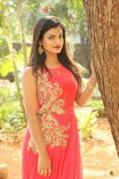Anusha at Dyavudaa Movie Teaser Launch (1)