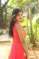 Anusha at Dyavudaa Movie Teaser Launch (10)
